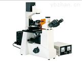 倒置荧光显微镜MHFL-1000
