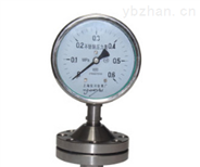 膜片壓力表  YPF-100A