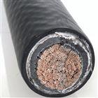 清洁环保机车电缆WDZR-DZY、WDZR-DZYR