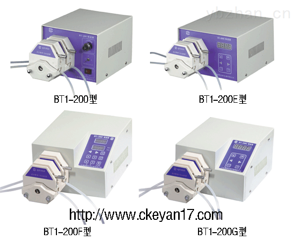 恒流泵(双通道),生产恒流泵,上海双通道恒流泵