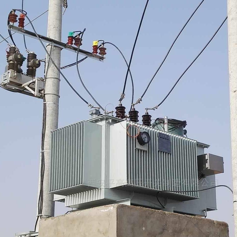 10KV户外高压线路调压器