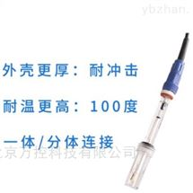 WK17-SIN-PH5018玻璃电极