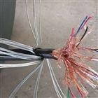 铠装耐高温计算机电缆DJFPV32,DJFPV32