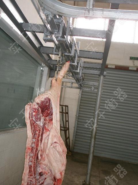 肉联厂屠宰秤