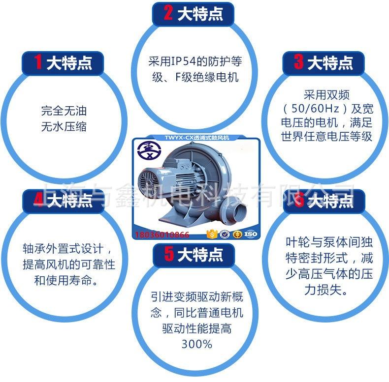 全风风机,RB-022全风风机,RB-022环形风机,RB-022全风高压风机示例图11