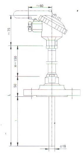 法兰连接热套热电偶(热电阻)产品结构图