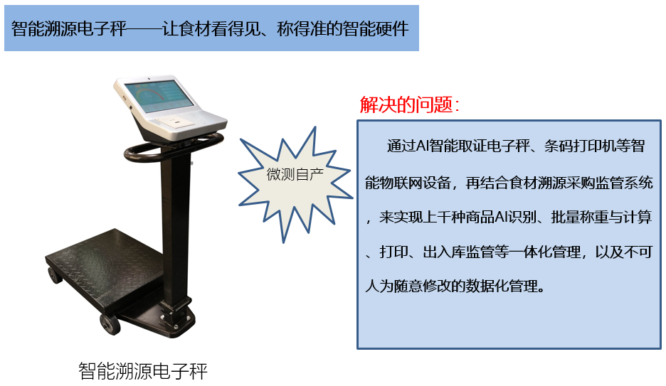 校园食品安全电子秤