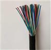 市内通信电缆HPVV通信配线25*2*0.5